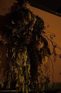 ②ふりかえって、、「フボーと植物展 白Ⅱ」_f0226293_1264193.jpg