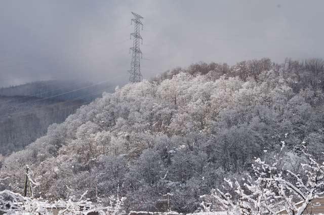 雪景色_d0162994_1144819.jpg