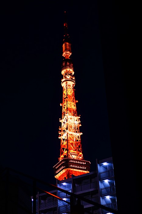 手持ちで東京タワー撮影会_b0145398_17285423.jpg