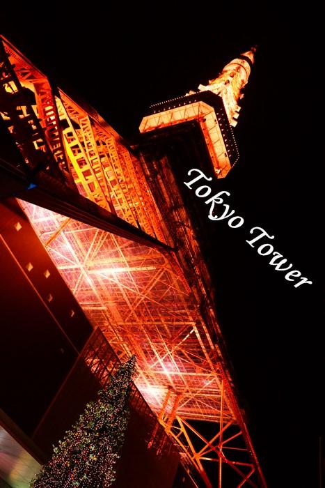 手持ちで東京タワー撮影会_b0145398_17311279.jpg