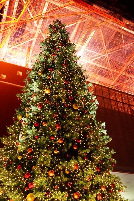 東京タワー クリスマス・イルミネーション2013_b0145398_2050532.jpg