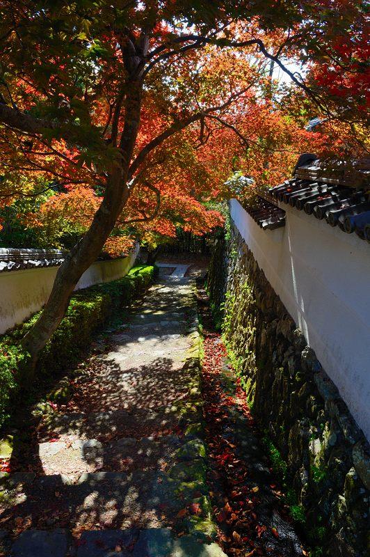 2013京都の紅葉!・勝持寺 其の一_f0032011_1953252.jpg