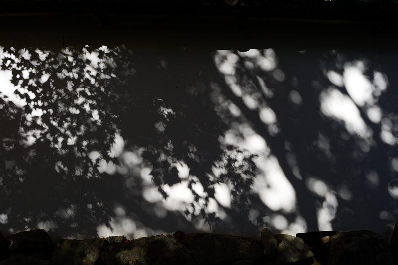 2013京都の紅葉!・勝持寺 其の一_f0032011_19551116.jpg
