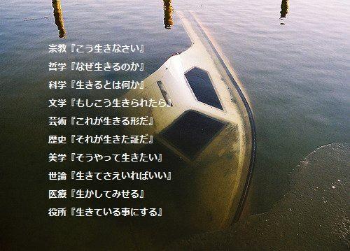 生_a0241725_12273613.jpg