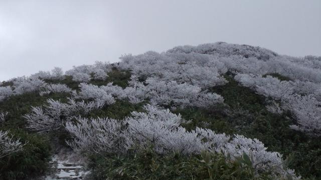 今シーズンの登山は終了です!_f0101226_2104259.jpg