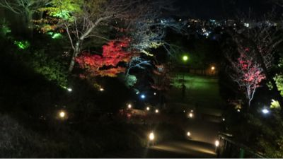 高台寺のライトアップ_c0223630_20551180.jpg