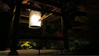 高台寺のライトアップ_c0223630_20551274.jpg