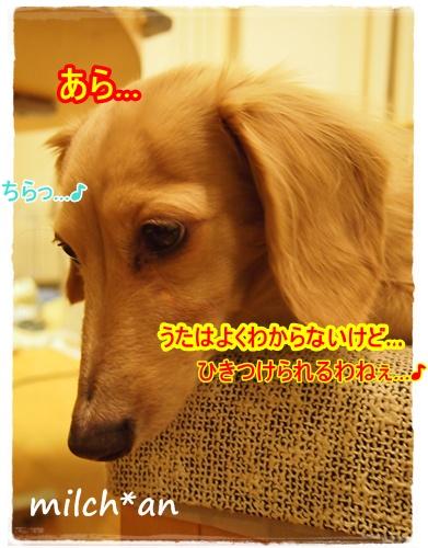 b0115642_22193412.jpg