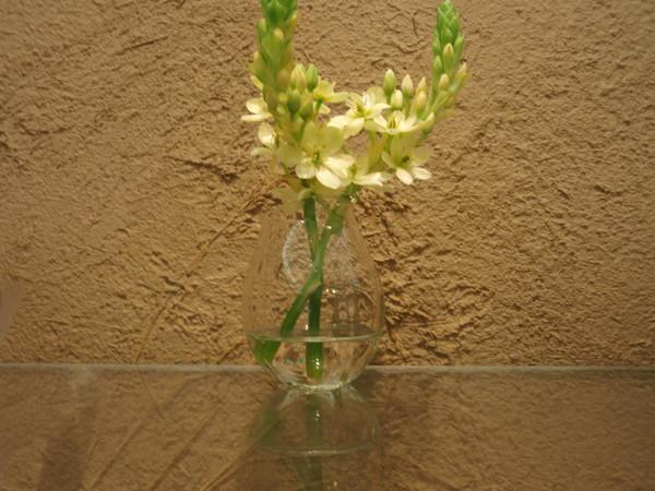 花いれ_b0132442_18224822.jpg