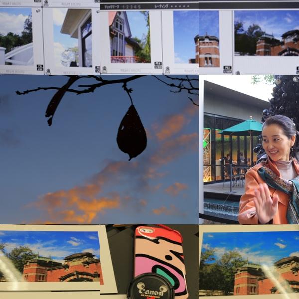 「Picture Style Editor」は奥深い_e0241944_2175585.jpg