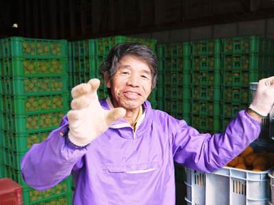 香り高き柚子(ゆず)「あっぱれ」 収穫後の選別作業と保管_a0254656_1815148.jpg