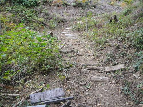 イノシシにやられた階段の補修      by    (TATE-misaki)_c0108460_2038227.jpg