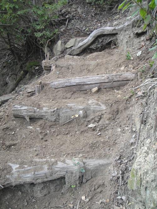 イノシシにやられた階段の補修      by    (TATE-misaki)_c0108460_2047442.jpg