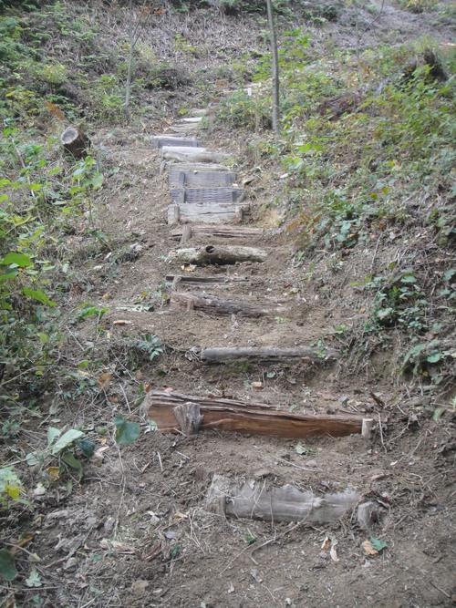 イノシシにやられた階段の補修      by    (TATE-misaki)_c0108460_20493167.jpg