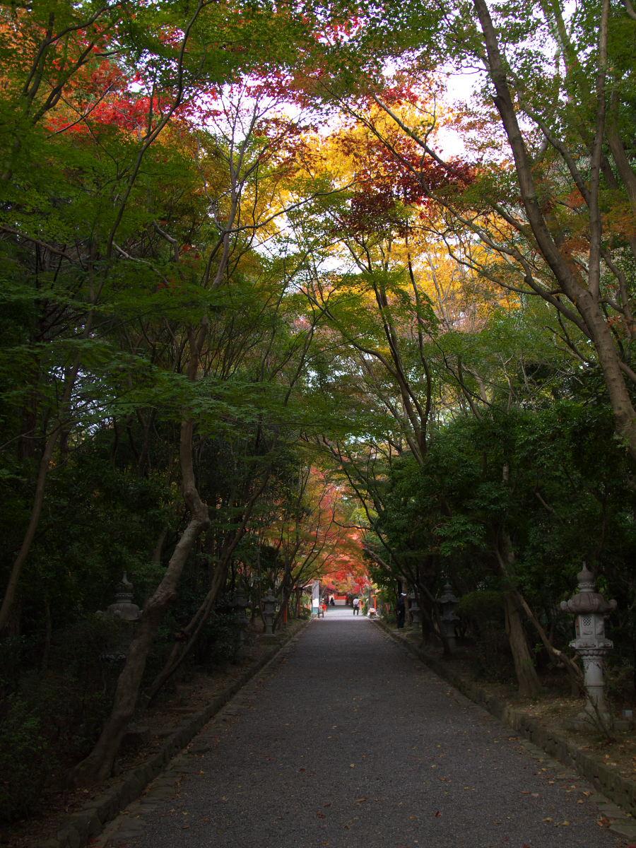 紅葉 2013 <大原野神社>        _f0021869_2352167.jpg
