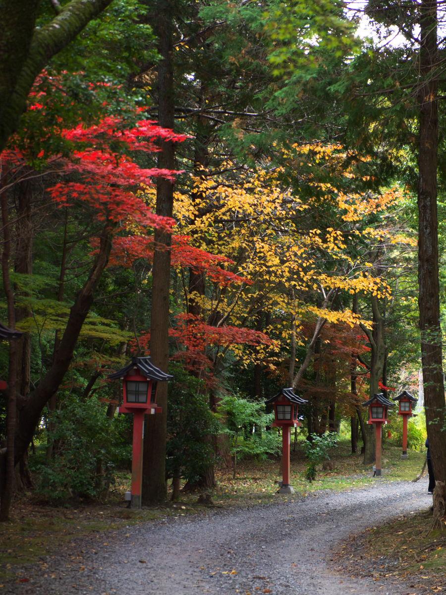 紅葉 2013 <大原野神社>        _f0021869_2352187.jpg