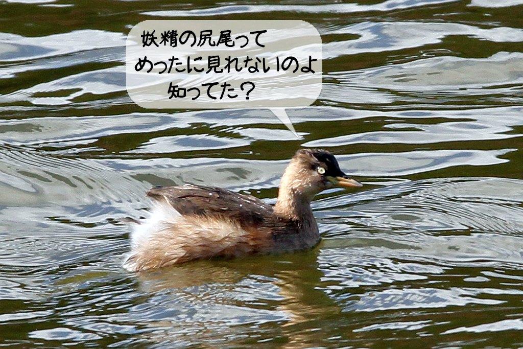 b0174191_2130093.jpg