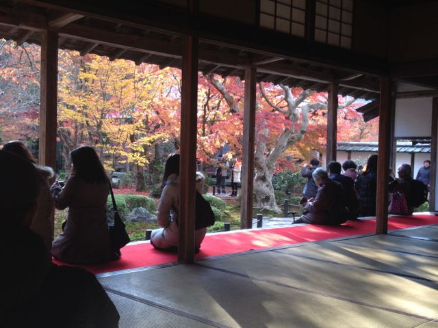 京都の紅葉~一乗寺界隈_e0152493_23233592.jpg