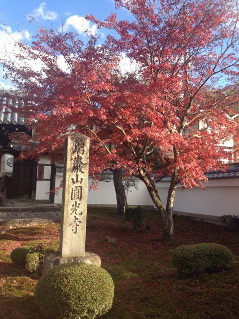 京都の紅葉~一乗寺界隈_e0152493_23234087.jpg