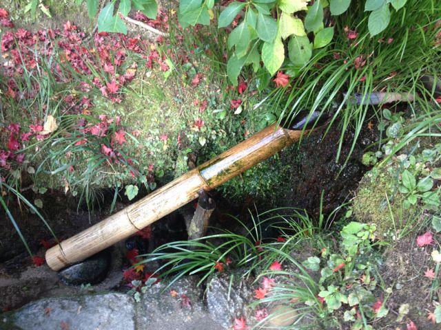 京都の紅葉~一乗寺界隈_e0152493_23235545.jpg