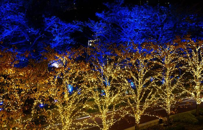 ミッドタウン・クリスマス 2013 ~誰かが誰かのサンタクロース~_b0145398_1811527.jpg