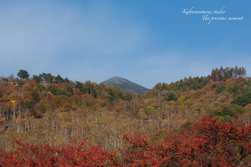 錦の富士見高原_c0137403_17204698.jpg