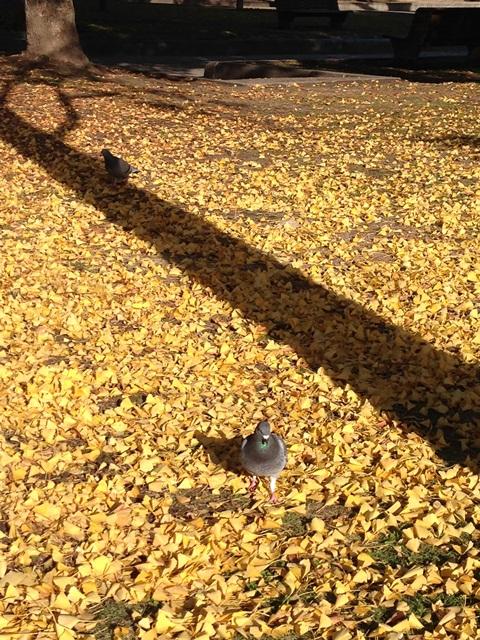 広島平和記念公園を歩いて(*^^*)_a0213806_2330118.jpg
