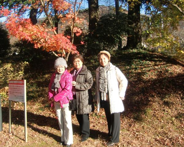 11月29日(土) 休暇を取って鬼怒川に_d0278912_2252447.jpg