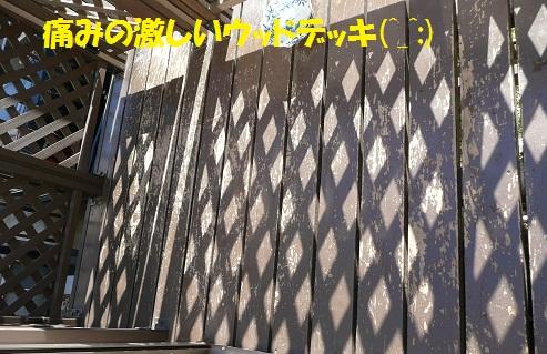 f0121712_6353684.jpg