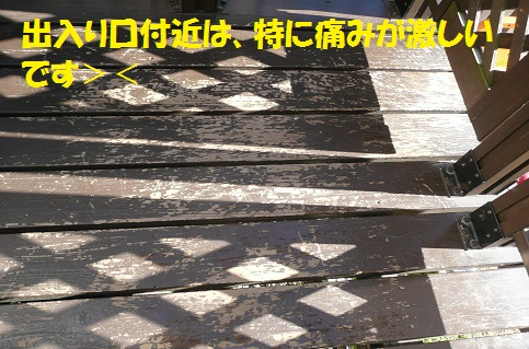 f0121712_6354481.jpg