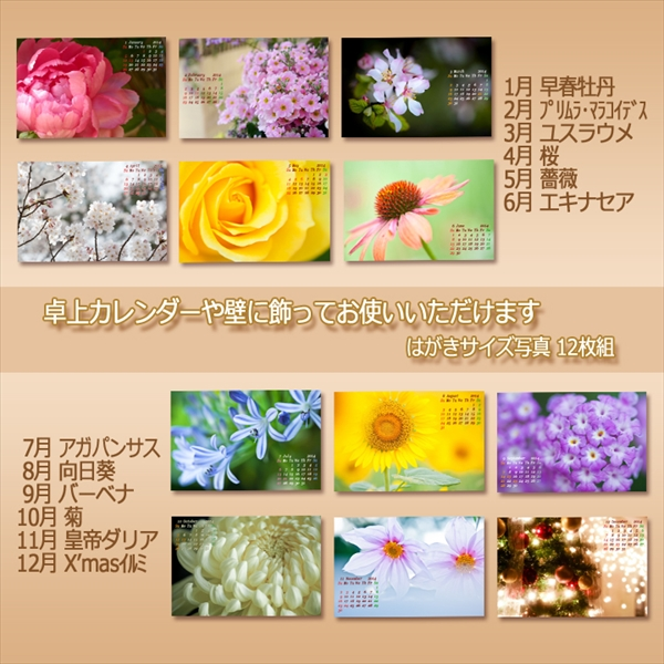 c0037519_12172126.jpg