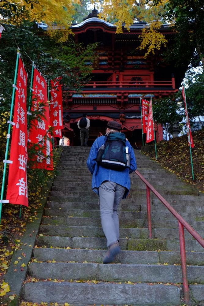 水沢神社_b0023523_2153451.jpg