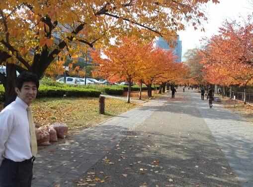 2013年11月の最後の週_c0113733_02289.jpg