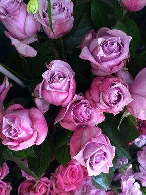 薔薇がバラで小粋に入荷中_f0145839_14141169.jpg