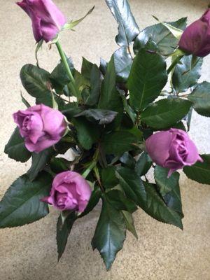 薔薇がバラで小粋に入荷中_f0145839_14141243.jpg