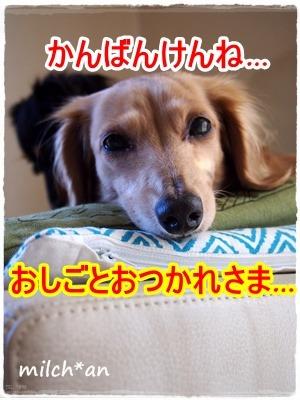 b0115642_21501160.jpg