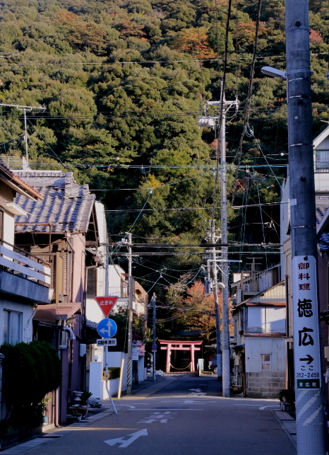 岐阜町さんぽ_e0241944_13225747.jpg