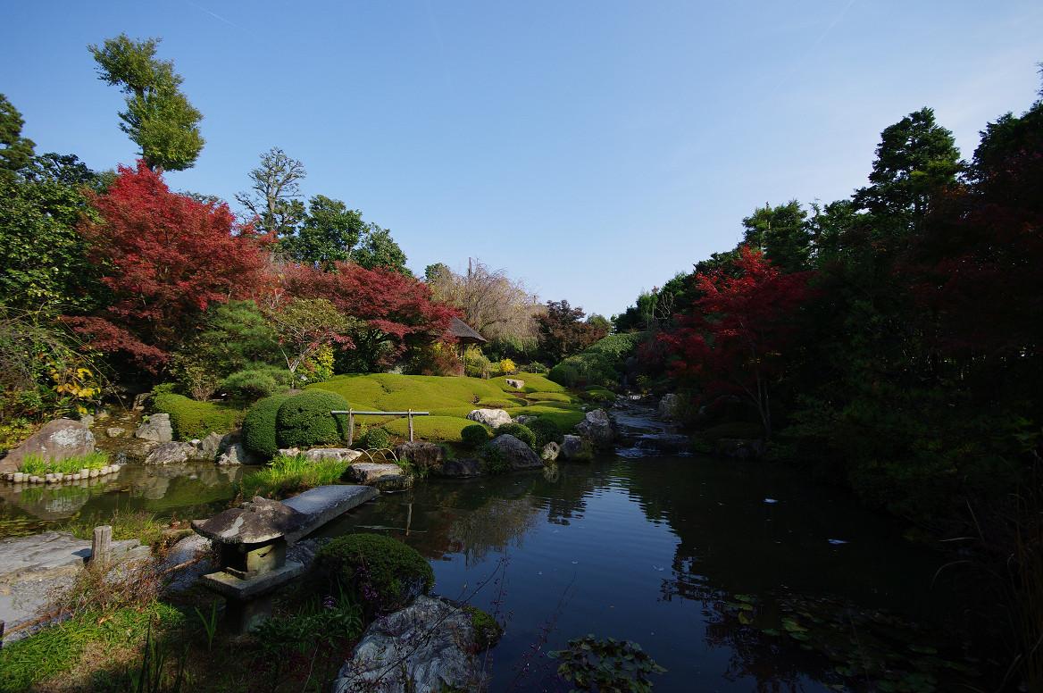 京都の紅葉 2013 〜退蔵院〜_f0152550_18595914.jpg