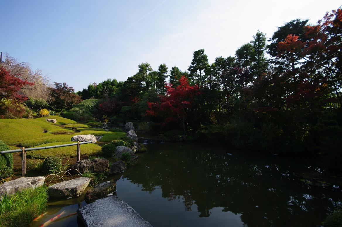 京都の紅葉 2013 〜退蔵院〜_f0152550_190144.jpg