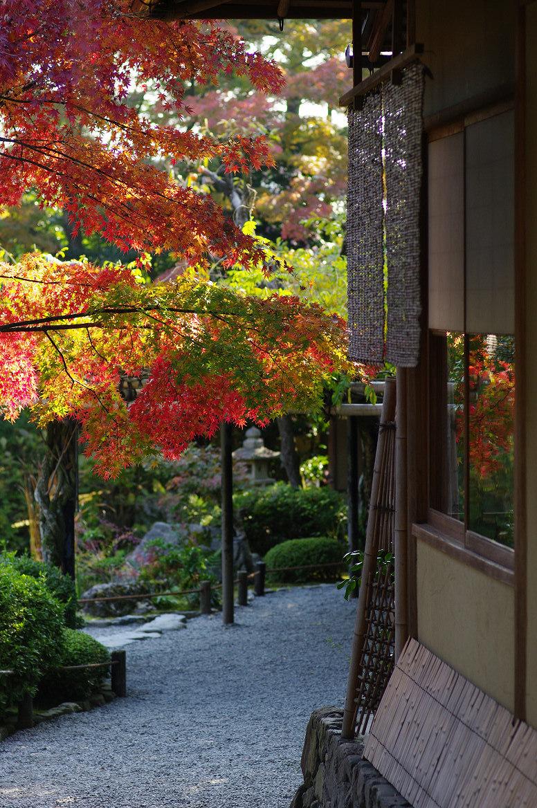 京都の紅葉 2013 〜退蔵院〜_f0152550_1911092.jpg