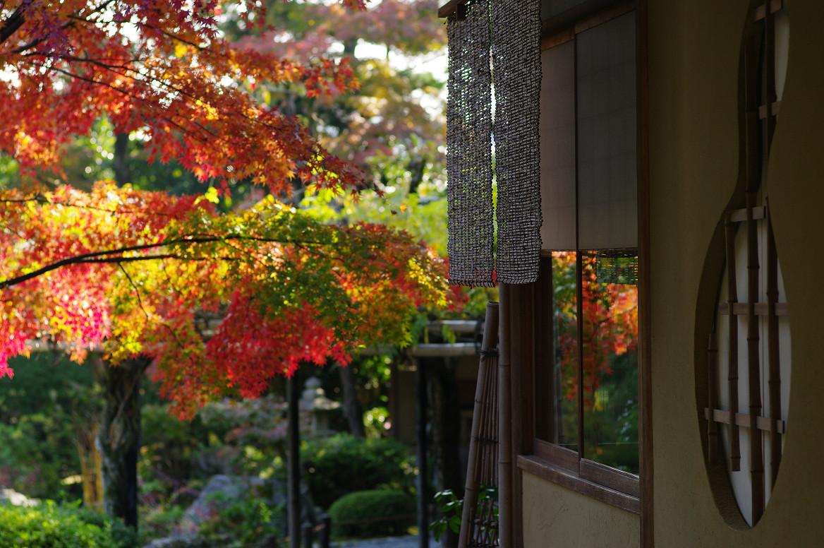 京都の紅葉 2013 〜退蔵院〜_f0152550_1912326.jpg