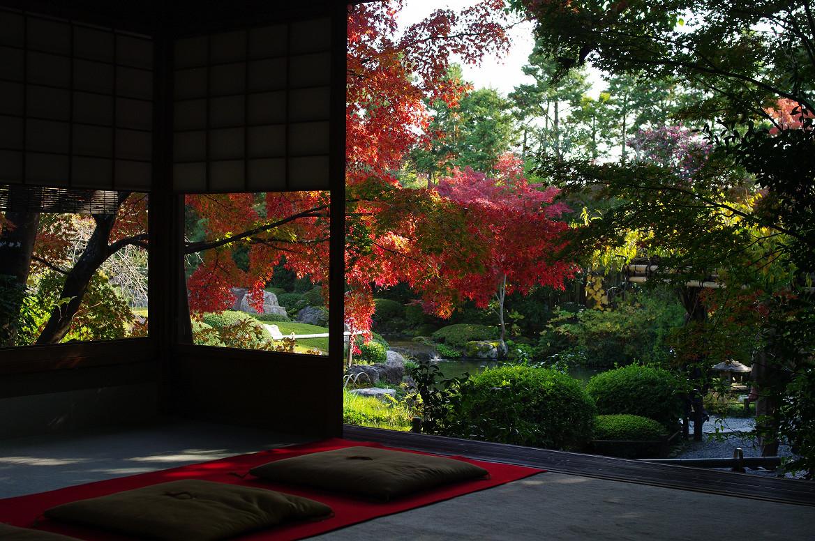 京都の紅葉 2013 〜退蔵院〜_f0152550_192759.jpg
