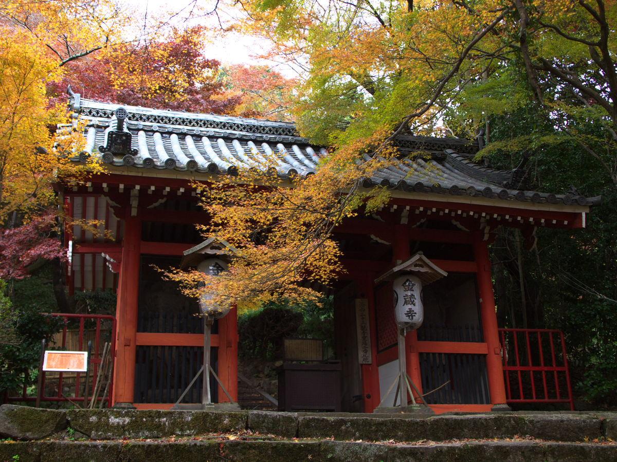 紅葉 2013 <金蔵寺>        _f0021869_23312483.jpg