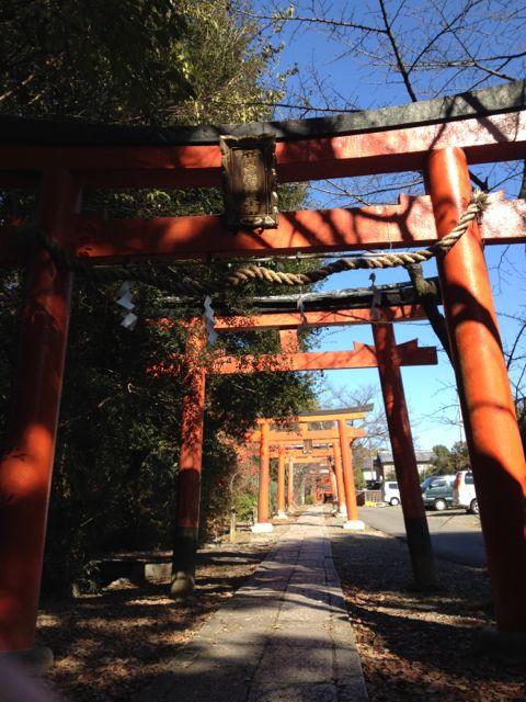 京都の紅葉~吉田山_e0152493_2311196.jpg