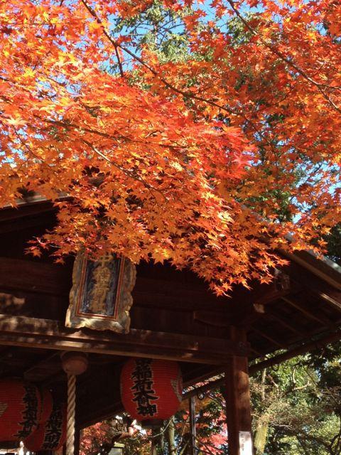 京都の紅葉~吉田山_e0152493_2311794.jpg