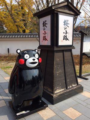 熊本ライブレポート☆_e0123401_17424099.jpg