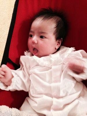 シオン2歳3ヶ月、みつき2ヶ月_e0253026_1362583.jpg