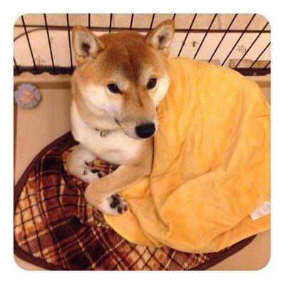 寒い夜だから_f0208738_22371499.jpg