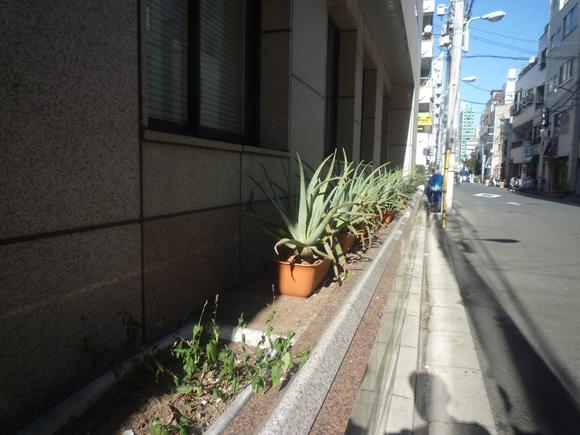健康診断を受けに川崎まで行った_b0217741_1221311.jpg
