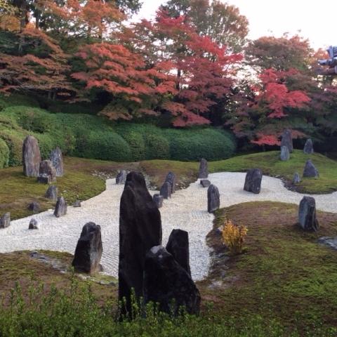 京都の紅葉と源氏物語・・_f0083294_21563533.jpg